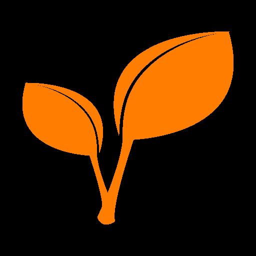 duurzaam-visaas